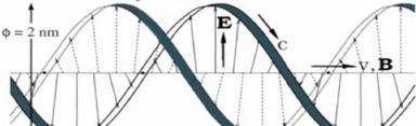 prędkości w DNA